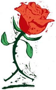 rosa movida